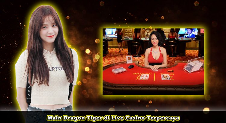 Main Dragon Tiger di Live Casino Terpercaya